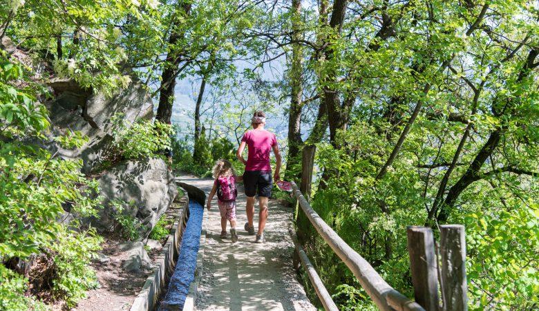 Wandern am Algunder Waalweg