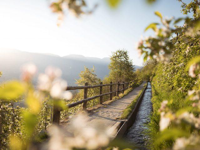Marlinger Waalweg | Sentiero della roggia Marlengo | Canal trail Marling