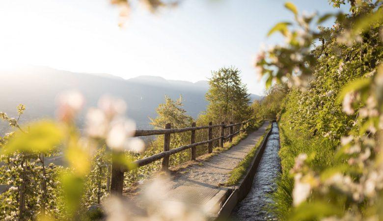 Marlinger Waalweg   Sentiero della roggia Marlengo   Canal trail Marling